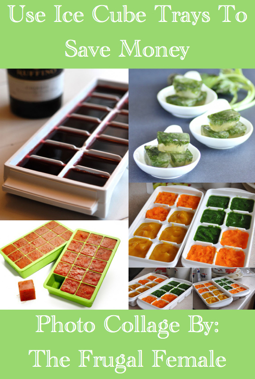 Use Ice Cube Trays To Save Money