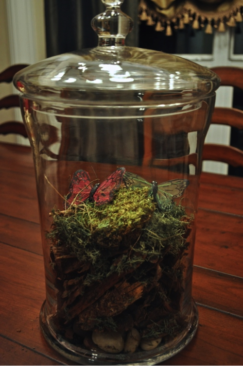 Pottery Barn Inspired Terrariums The Frugal Female