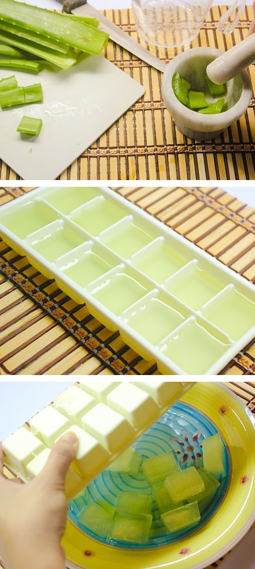 Soothing Aloe Vera Ice Cubes